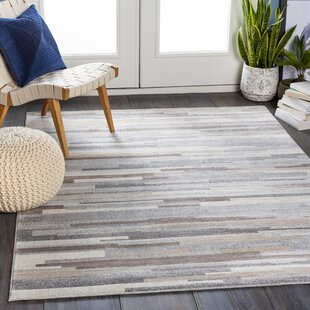 Brown Tan Modern Contemporary Area Rugs You Ll Love In 2021 Wayfair