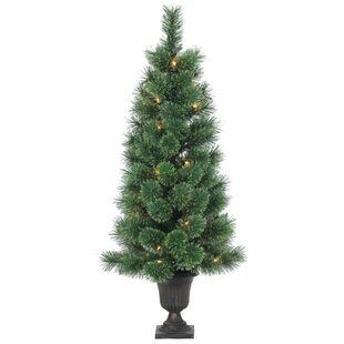 3.5' Green Pine Artificial Christmas Tree with 50 Clear Lights