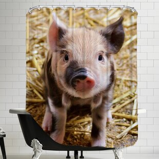 Pig Piglet Farm Single Shower Curtain