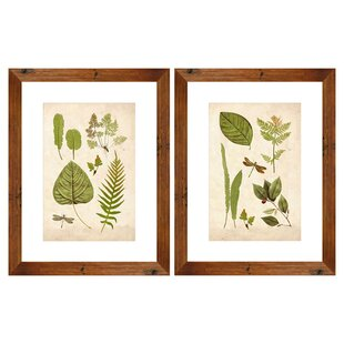 Leaf Study 2 Piece Framed Graphic Art Set by PTM