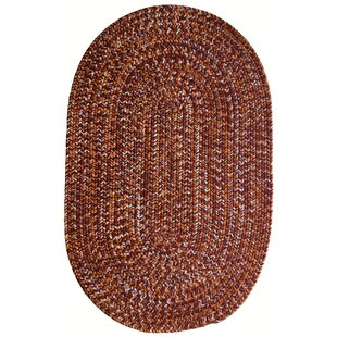 Aukerman Isabelline Hand-Braided Red/Burnt Orange Indoor/Outdoor Area Rug By Isabelline
