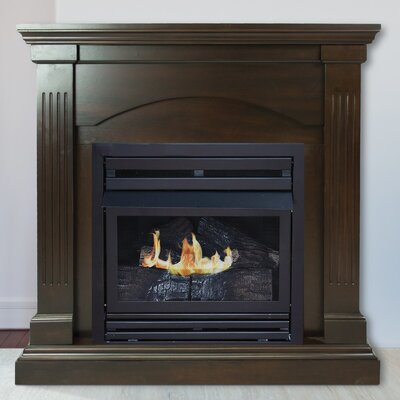 Sheilah Vent Free Propane Fireplace Darby Home Co