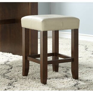 Georgetta 25 Bar Stool with Cushion (Set of 2) by Alcott Hill