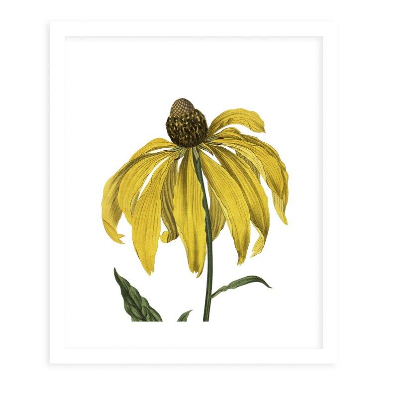Charlton Home Flower Nineteen White By Terri Ellis Picture Frame Graphic Art Print On Paper Wayfair