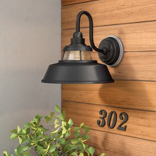 Fifine 1-Light Outdoor Wall Lantern By 17 Stories