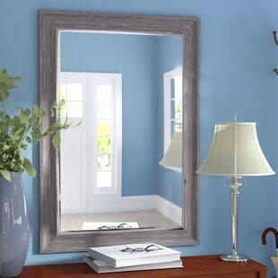 Modesto Transitional Driftwood Wall Mirror ByThree Posts