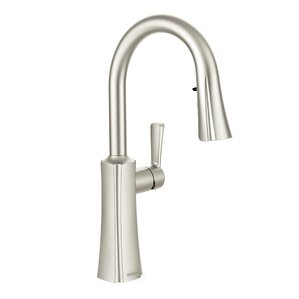 Moen Etch Single Handle Kitchen Faucet