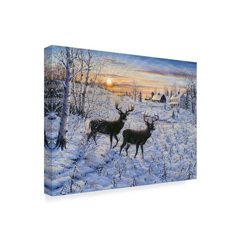 Trademark Art Two Deer In The Moonlight Graphic Art Print On Wrapped Canvas Wayfair