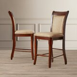 Swenson 24 Counter Stool (Set of 2) by Darby Home Co