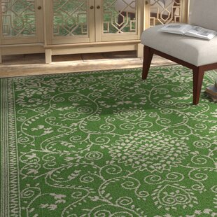 Fontayne Lime Green Indoor/Outdoor Area Rug
