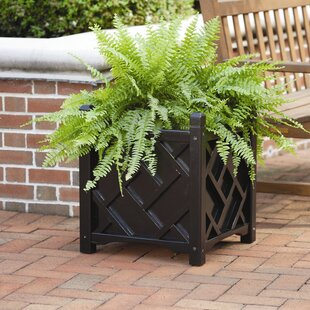 Large Wood Planter Boxes You Ll Love Wayfair