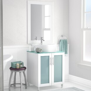 Low priced Cartert 24 Single Vanity Set with Mirror ByWade Logan