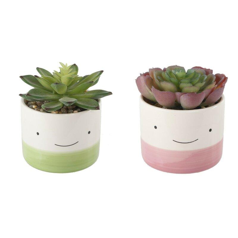 Ebern Designs 2 Piece Happy Face Succulent Plant In Pot Set Reviews Wayfair