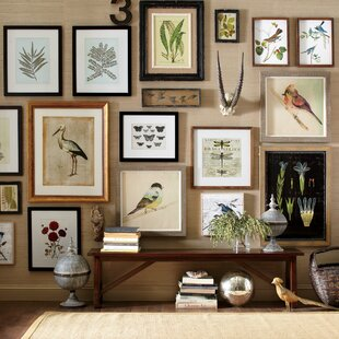 Whimsical Bird Wall Art Wayfair