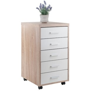 Compare Midway 5-Drawer Mobile Vertical Filing Cabinet by Ebern Designs