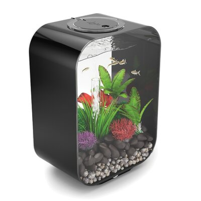 "Life Aquarium Tank Biorb Color: Black, Size: 22"" H X 15.75"" W X 10"" D"