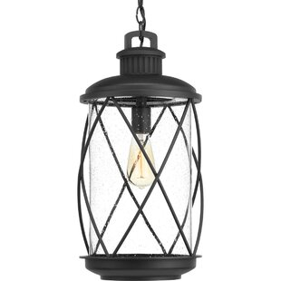 Maestas 1-Light Outdoor Hanging Lantern