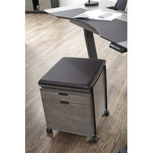 Francella 2-Drawer Mobile Vertical Filing Cabinet by Comm Office #2