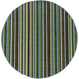 Joaquin Blue/Green/Brown Indoor/Outdoor Area Rug