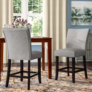 Three Posts Lancaster 24 Bar Stool (Set of 2)