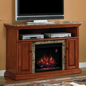 Lincolnville Traditional TV Stand with Fireplace by Darby Home Co