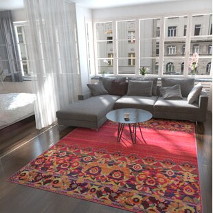 Pink Rugs- Styles for your home | Joss & Main
