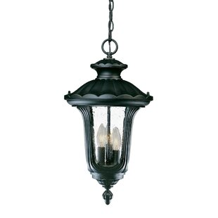 Look for Princeton 3-Light Outdoor Hanging Lantern By Charlton Home