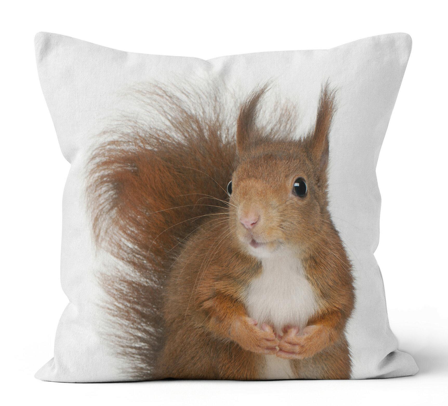 Ziya Blue Squirrel Throw Pillow Wayfair