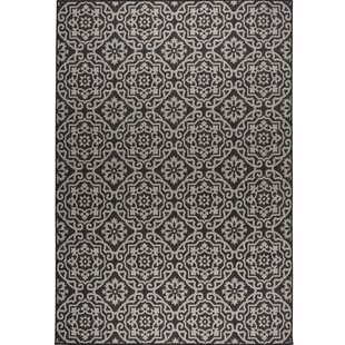 Find a Tiled Black/Gray Indoor/Outdoor Area Rug By Nicole Miller
