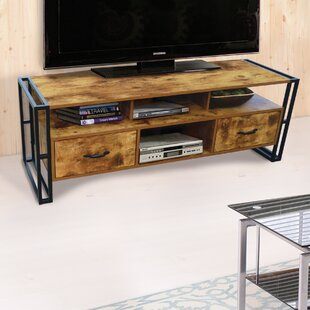 Best Reviews Vania TV Stand for TVs up to 55 by Williston Forge Reviews (2019) & Buyer's Guide