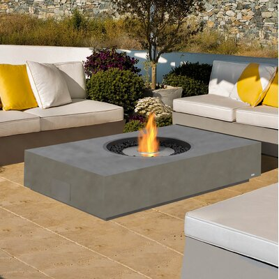 EcoSmart Fire Martini Freestanding Stainless Steel Bio-Ethanol Fuel Fire pit Table Finish: Natural
