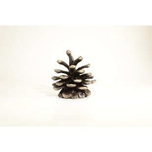 Lodgepole Pine Novelty Knob by Timber Bronze 53, LLC