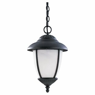 Read Reviews Nicollet Outdoor Pendant in Forged Iron with Swirled Marbleized Glass By Bloomsbury Market
