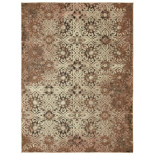 Compare Cloisters Blush Pink and Ivory Area Rug ByPatina Vie