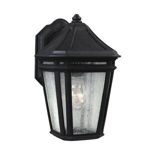 Maxine 1-Light Outdoor Wall Lantern