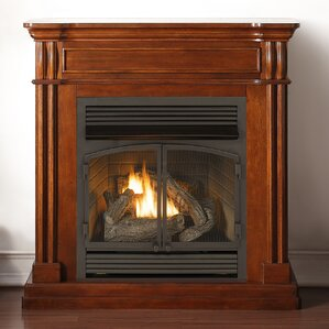 Autumn Spice Dual Fuel Ventless Natural Gas/Propane Fireplace by Duluth Forge