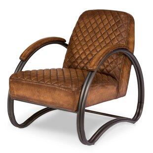 Hide and Sleek Ferris Armchair by Sarreid Ltd