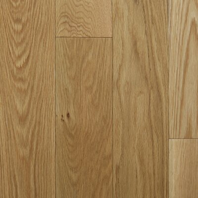 "Reykjavik 5"" Engineered Oak Hardwood Flooring Branton Flooring Collection Finish: White Oak Natural"
