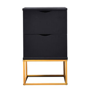 Online Reviews Dolores Bedside 2 Drawer Nightstand by Mercer41