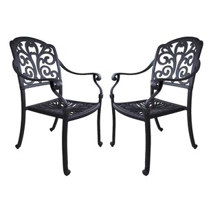 Thurston Patio Dining Chair with Cushion (Set of 2)