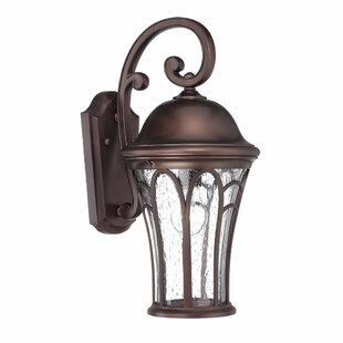 Berube 1-Light Outdoor Wall Lantern