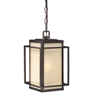 Guinn 1-Light Outdoor Pendant By Brayden Studio Outdoor Lighting