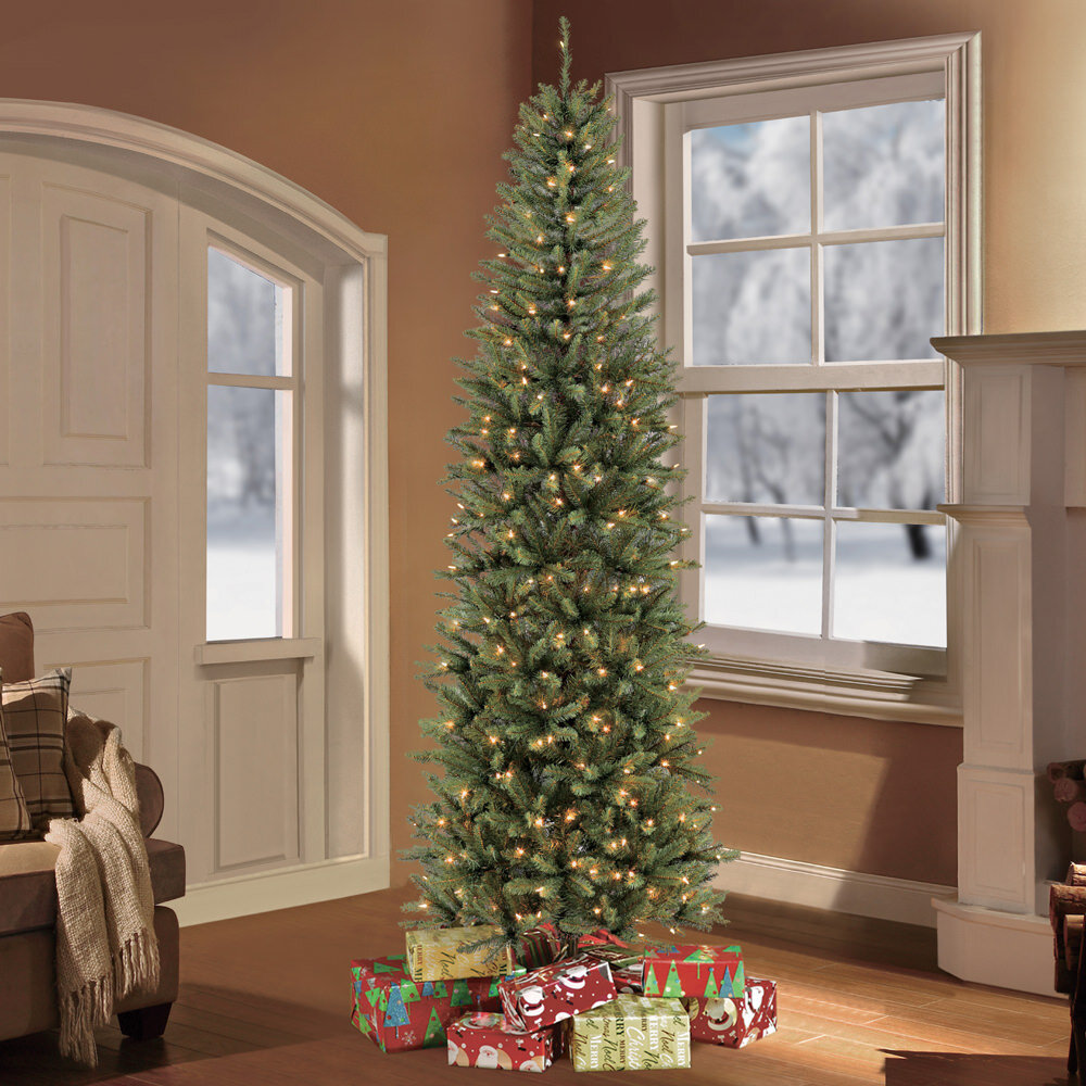 Pencil Christmas Tree.Pre Lit Fraser Pencil Green Fir Artificial Christmas Tree With Clear Lights