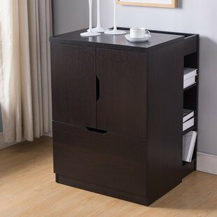 Dewitt 1-Drawer Mobile Vertical Filing Cabinet