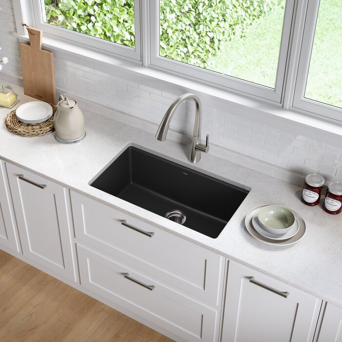 31 L X 17 W Undermount Kitchen Sink With Drain Assembly