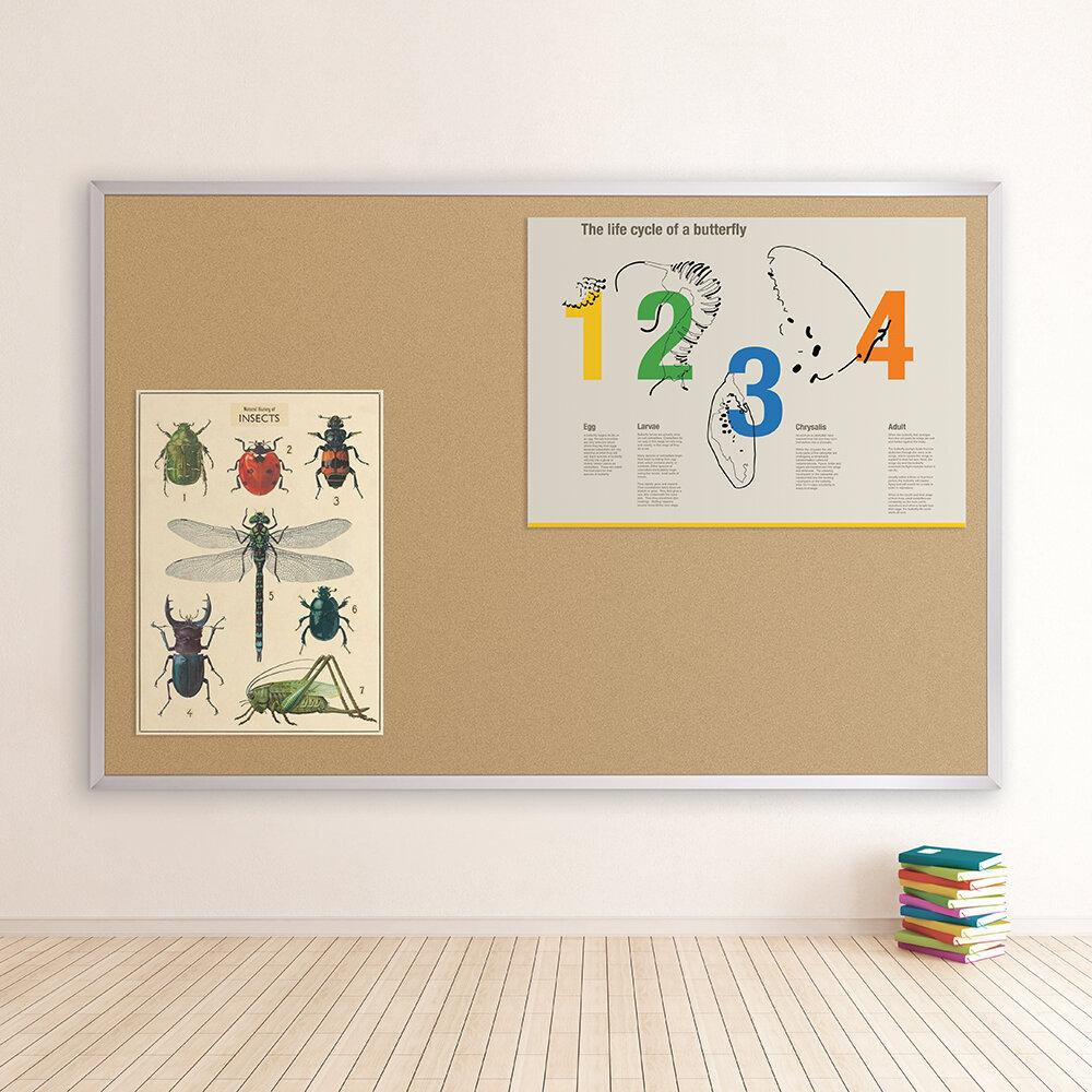 Best-Rite Valu-Tak Series Wall Mounted Bulletin Board & Reviews ...