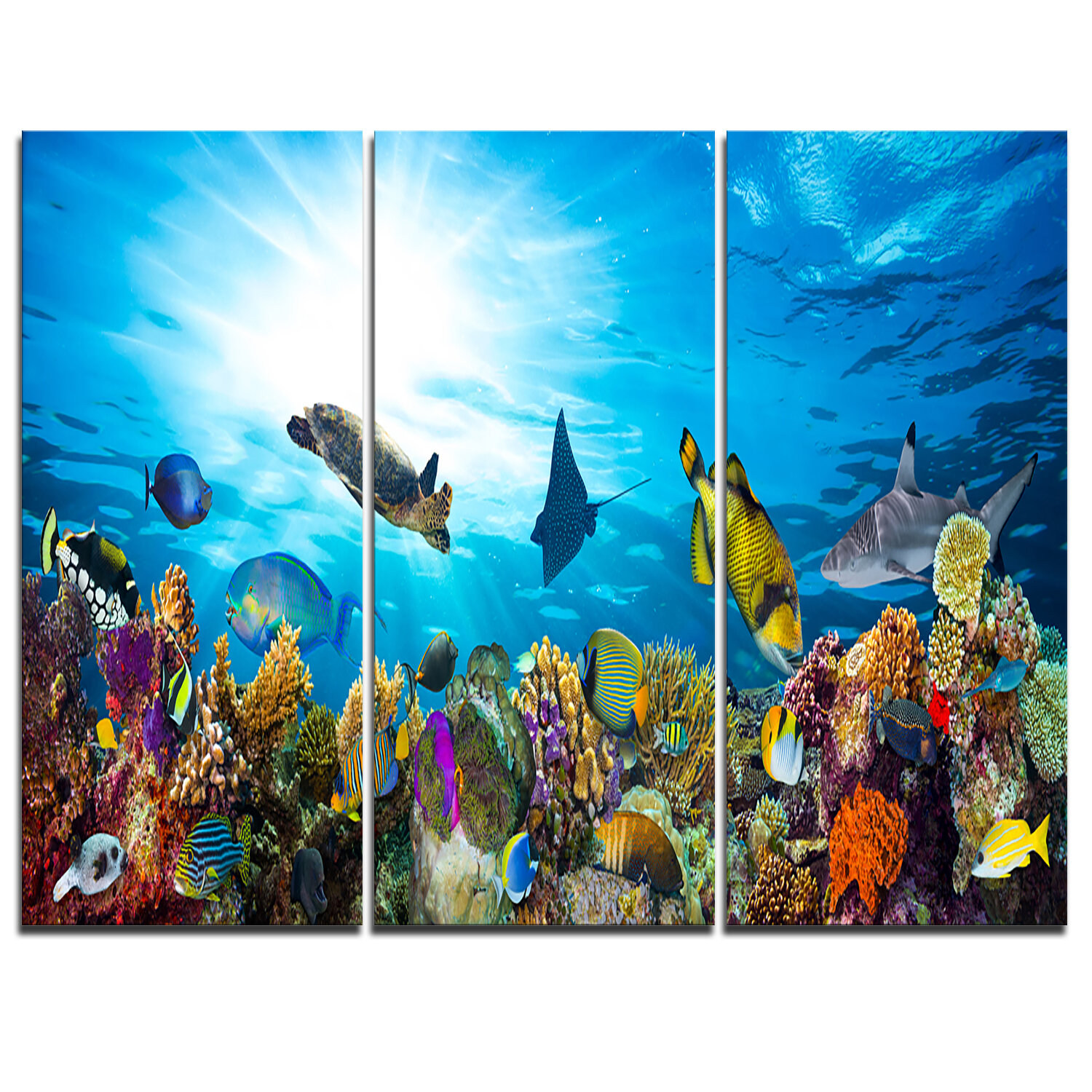 Gallery Wrapped Canvas Shark Wall Art You Ll Love In 2021 Wayfair