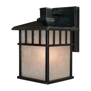 Shopping for Teminot 1-Light Outdoor Wall Lantern By Bloomsbury Market