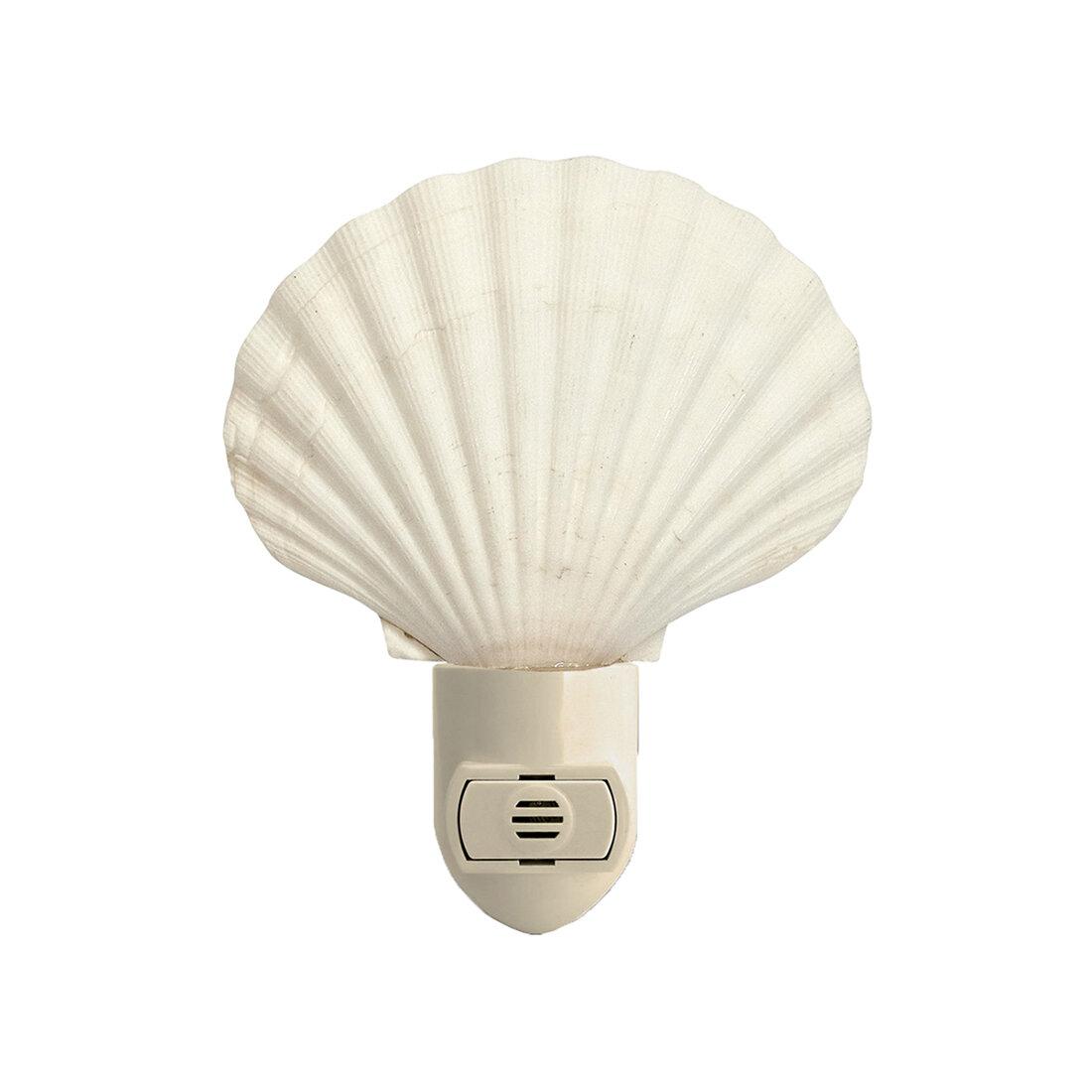 The Seashell Company Night Lights You Ll Love In 2021 Wayfair