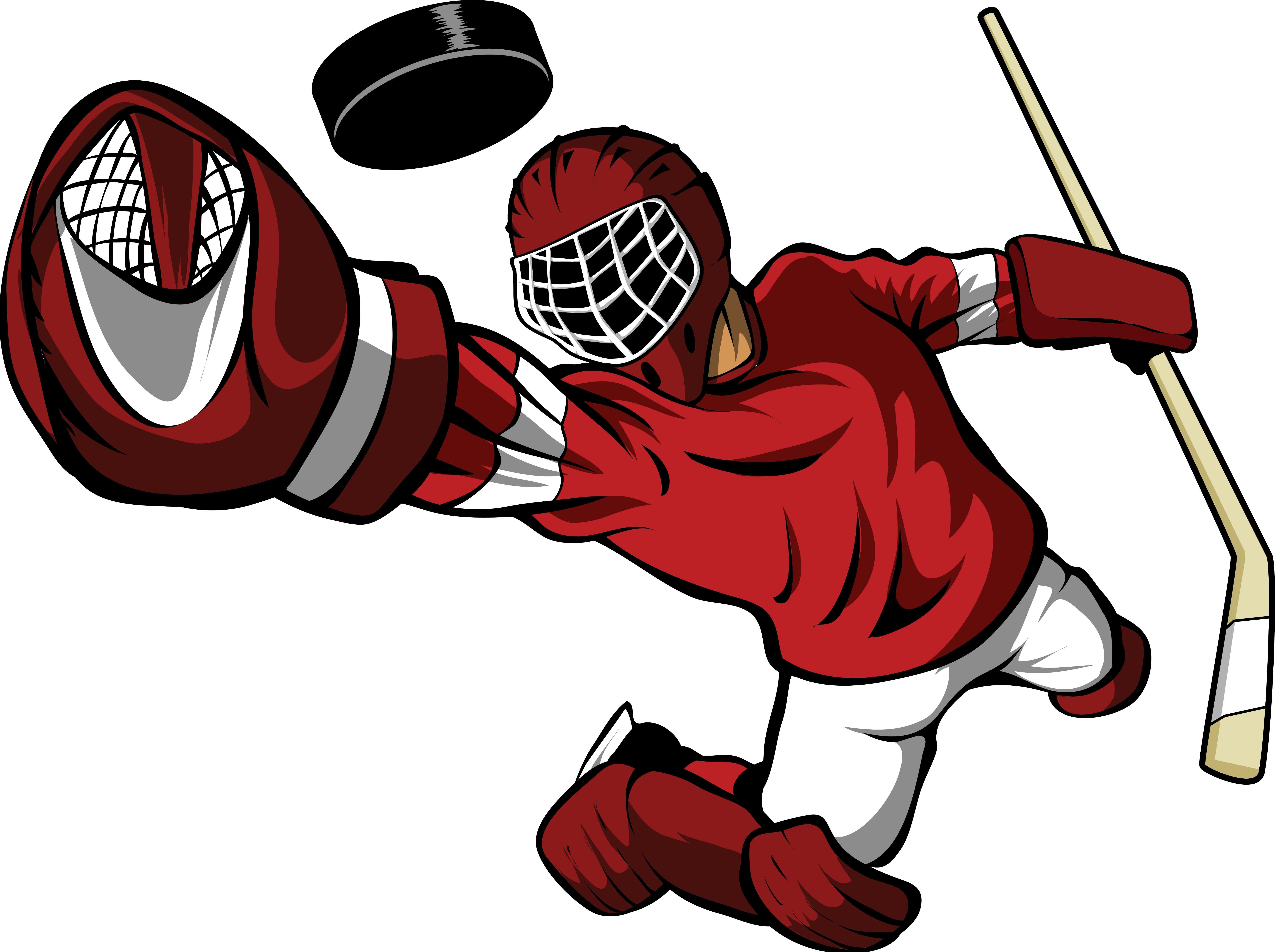 Wallhogs Winn Hockey Goalie Cutout Wall Decal Wayfair Ca